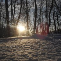 Зимнее солнце :: Анатолий