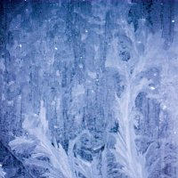 мороз :: Александра Вассель