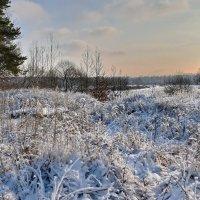 Лёгкий  снежок. :: Валера39 Василевский.