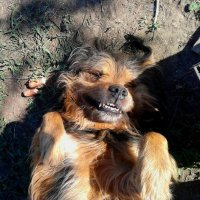 Моя любимая улыбашка :) :: Наталия Маресьева