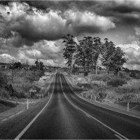 Дорогами Австралии. :: Владимир Сидоркин