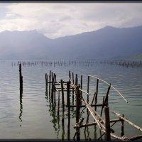 На озере. :: Михаил Рогожин