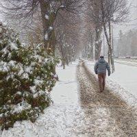зима пришла.... :: юрий иванов