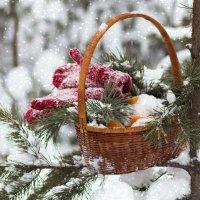 Снег.... :: Елена