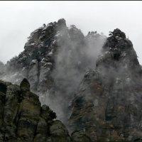 Где рождаются туманы? :: Ольга Голубева