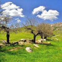 Зеравшанские горы в Узбекистане :: Денис Кораблёв