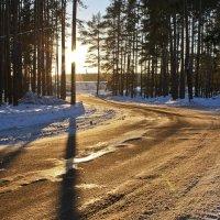 Зимняя дорога :: Екатерина К..