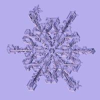Снежинка :: Тимофей Черепанов