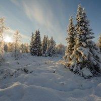 Морозное утро!!! :: Олег Кулябин