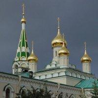 Воскресенский Новодевичий монастырь :: Алина Шевелева