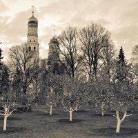 Александровский сад, Москва :: Elena .