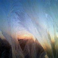 Морозный узор :: Valeria Mamontova