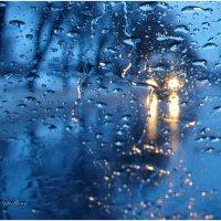 Зимний дождь.... :: Svetlana Kravchenko
