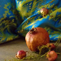 improvisation with fruit :: alexandr lin
