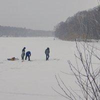 Зимнее озеро :: Олег Пучков
