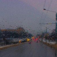 В Харькове дождь. :: Ольга Назаренко