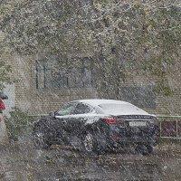 Снег! Город почти ослеп! :: Юрий Кузнецов