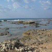 Всё тоже море,город Акко и солнца полные ладошки :: Надежда