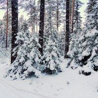 Тверская зима :: Павлова Татьяна Павлова