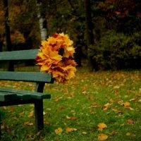 Осенние мотивы :: Ксения Беляева