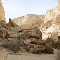 парк Эйн-Авдат в пустыне Негев :: vasya-starik Старик