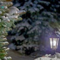 Ночь на Рождество !!! :: Сергей Щербатюк