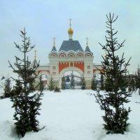 Врата храма в Рождество. :: Мила Бовкун