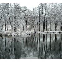 первый снег3 :: Вера Ульянова