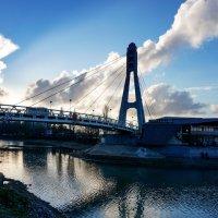 Мост поцелуев в Краснодаре :: Андрей Майоров