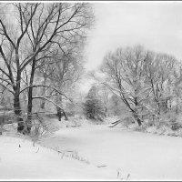 Зимняя речка... :: марк