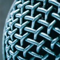 Сеточка на микрофоне :: Дмитрий Стёпин