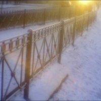 Низкое солнце :: galina bronnikova