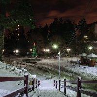 зимний вечер в парке 3 :: Galina