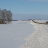 Бежит дорога среди заснеженных полей. :: Борис Митрохин