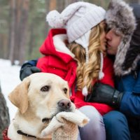 Lovestory :: Наталия Колобердина