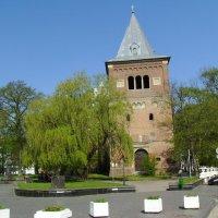 Римо - католический  храм  в  Дрогобыче :: Андрей  Васильевич Коляскин