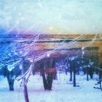 Даже память замерзает.. :: Ирина Сивовол