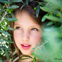 в оливковых деревьях :: Maryana Chistol