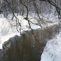 Серебрянка зимой :: Длинный Кот