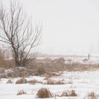 Одиночество :: Ирина Остроухова