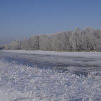 зима :: Сергей Глушко