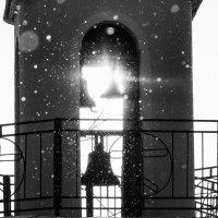 Снежность :: Elena Kornienko