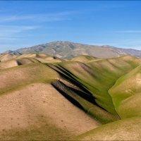 Холмы Южного Таджикистана :: Георгий Ланчевский