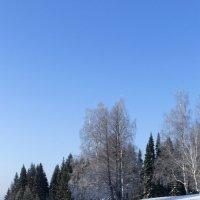 Зимний лес 2 :: Иван .