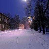 Зимний этюд :: Наталья Кузнецова