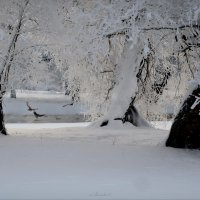 Зимний полдень :: sv.kaschuk
