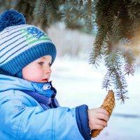 Зима :: Богдана Северин