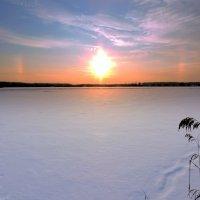 Солнечное гало. :: Hаталья Беклова