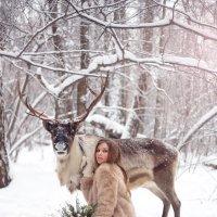 В лесу :: Юлия Полянина