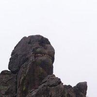 Скальный останец :: Виктор Мухин